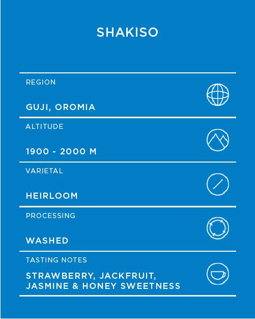 Shakiso-Artboard-6